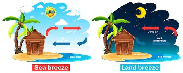 Diagramm, das zirkulation der see- und landbrise zeigt