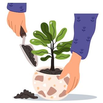 Die hände werden in einen blumentopf gepflanzt
