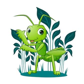 Die hübsche heuschrecke steht in der nähe der pflanze im garten der illustration