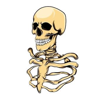Die illustration des rippen- und schädelkopfes des menschen