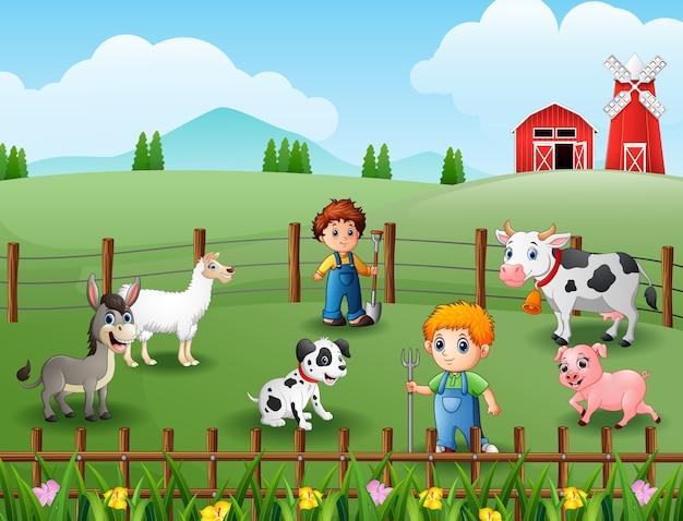 Die landwirte, die tiere auf bauernhof halten