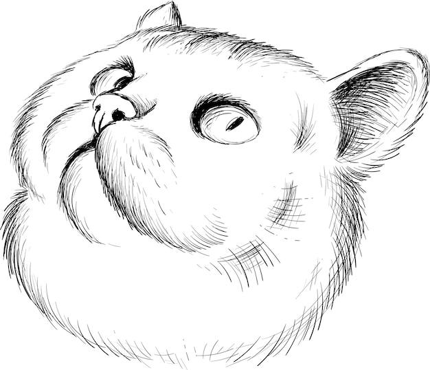 Die logo-katze für tattoo- oder t-shirt-design oder outwear. netter druckartkatzenhintergrund. diese handzeichnung wäre schön auf dem schwarzen stoff oder der leinwand zu machen.