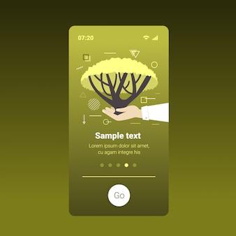 Die menschlichen hände, die akazienbaumerdtag halten, retten planeten beten für australien-ökologieumweltkonzept smartphone-schirm bewegliche app