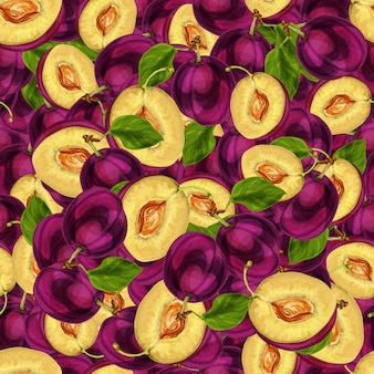 Die nahtlose pflaumenfrucht, die zur hälfte mit samenblättern und der saftigen gezeichneten skizze des fleischmusters hand geschnitten wird, vector illustration