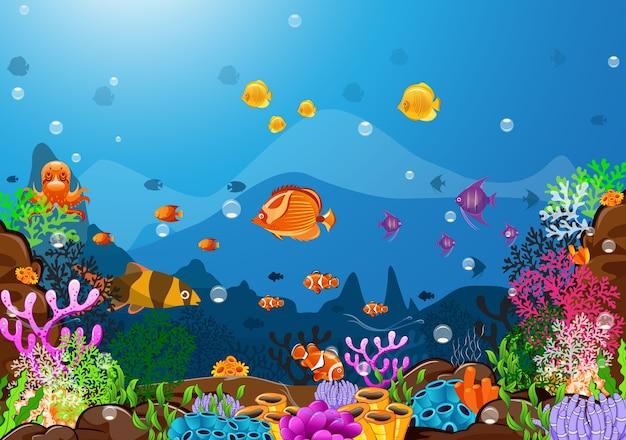 Die schönheit des lebens unter dem meer