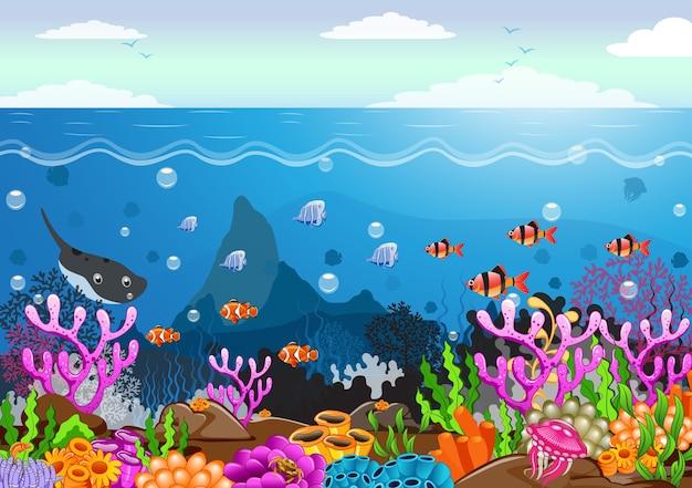 Die schönheit des unterwasserlebens