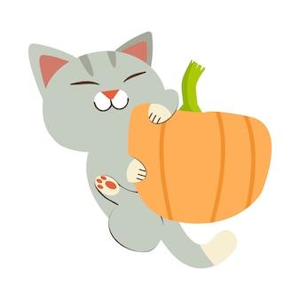 Die süße katze mit dem kürbis.