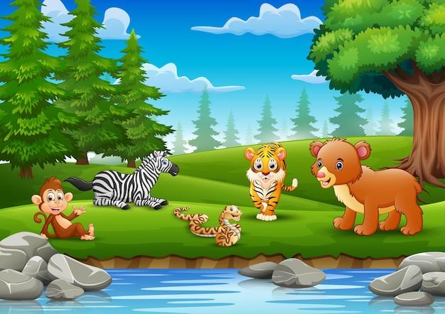 Die tiere genießen die natur am fluss