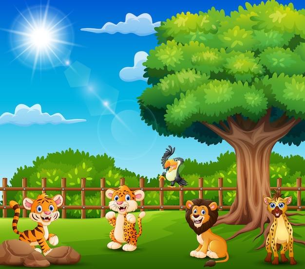 Die tiere genießen die natur am käfig