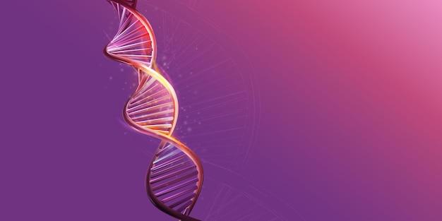 Dna-doppelhelix-modell auf violettem hintergrund