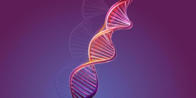Dna-doppelhelix-struktur auf violettem hintergrund