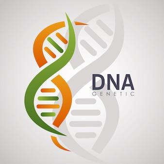 Dna-genetisches poster mit molekül