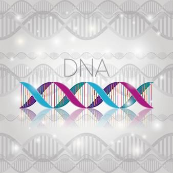 Dna-molekül auf linienstruktur