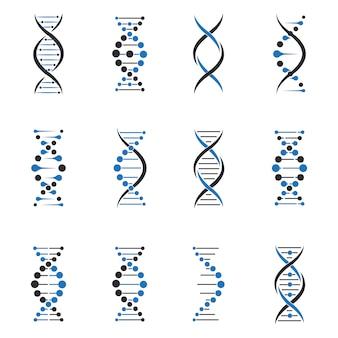 Dna-molekül gesetzt