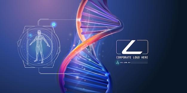 Dna-spirale mit abstrakten unternehmensinfografiken über die menschliche gesundheitsforschung