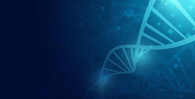 Dna-spirale-molekül abstraktes polygonales drahtmodell dna-molekül-helix-spirale medizinische wissenschaft