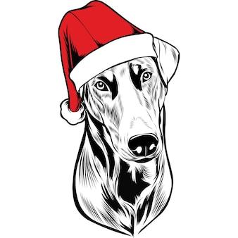 Dobermann hund in weihnachtsmütze zu weihnachten