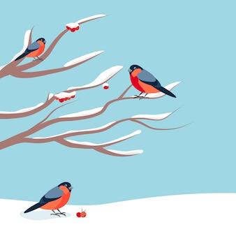 Dompfaff sitzt auf schneebedecktem ast der eberesche. weihnachtsillustration