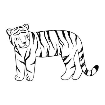 Doodle tiger steht, von hand gezeichnet. süßer chinesischer tiger mit schwarzen linien gezeichnet. vektor-illustration isoliert auf weißem hintergrund