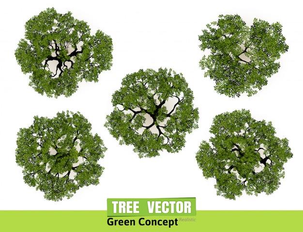 Draufsicht der bäume für landschaftsvektorillustration.