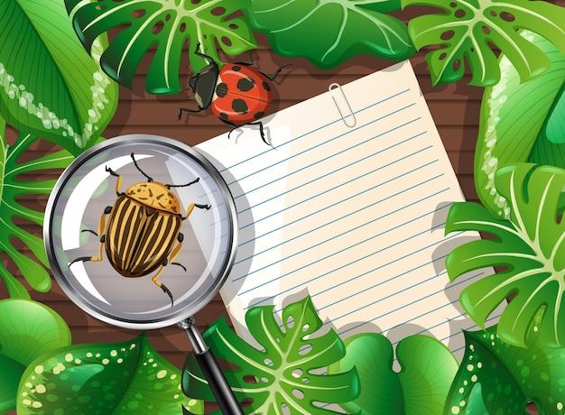 Draufsicht des holztischs mit leerem papier und insekten- und blattelement