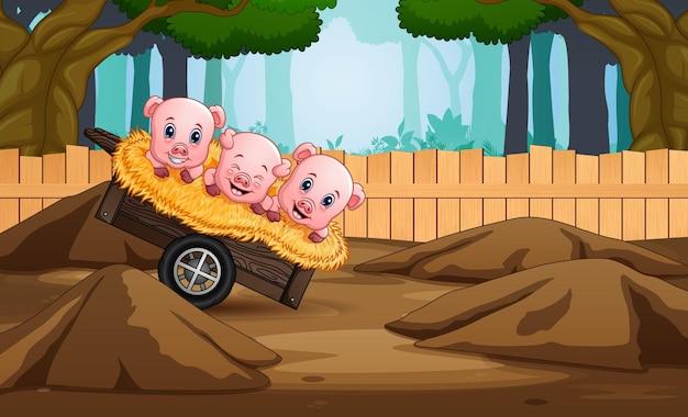 Drei kleine schwein cartoon illustration des spielens in der farm