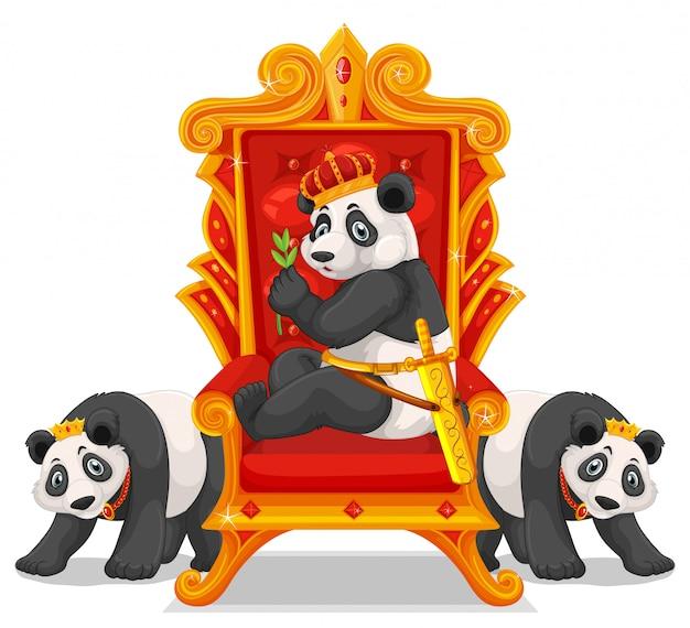 Drei pandas auf dem thron