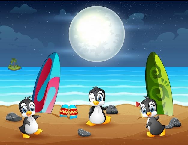 Drei pinguine spielen am strand