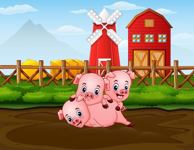 Drei schweine, die am bauernhof mit rotem barnhouse hintergrund spielen
