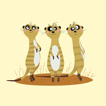Drei süße erdmännchen stehen im sand und schauen vorsichtig zur seite.