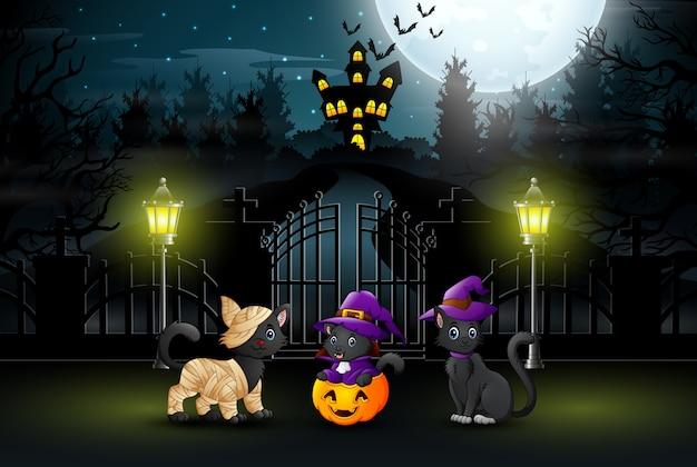 Drei süße katzen in der nacht halloween-partys