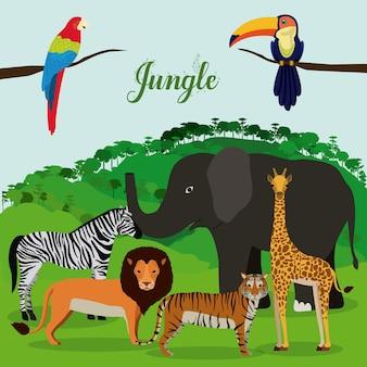 Dschungel-design
