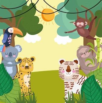 Dschungelsafari tiere