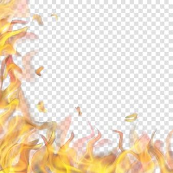Durchscheinende feuerflamme links und unten auf transparentem hintergrund. für den einsatz auf hellen hintergründen. transparenz nur im vektorformat