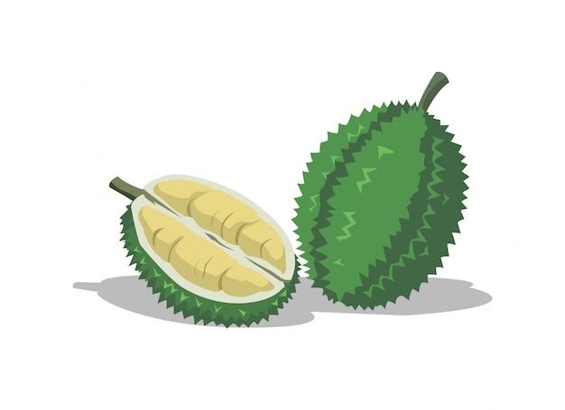 Durian ist eine köstliche frucht