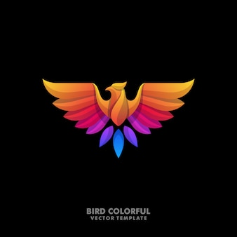 Eagle colorful designs illustration-vektorschablone
