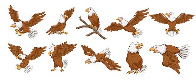 Eagle-vektorsatz