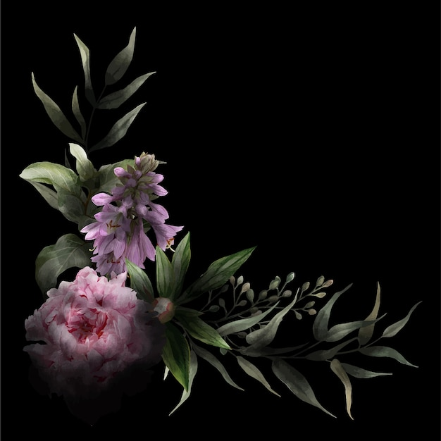 Ecke blumenaquarell pfingstrose und hosta blumen, blätter, schwarzer hintergrund und tiefe schatten. hand gezeichnete aquarellillustration.