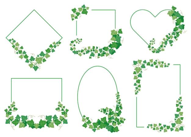 Efeugrün verlässt rahmen. grenzen von immergrünen pflanzen verschiedener formen auf weißem hintergrund. zweigrebenzweige auf raute, quadrat, ellipse, herz und rechteck setzen vektorillustration