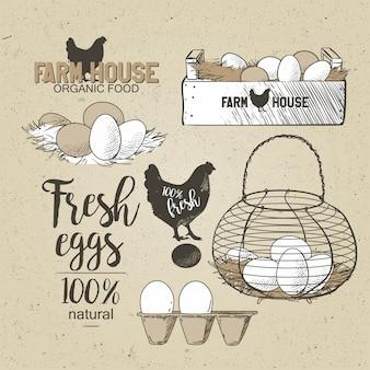 Eier im französischen landdraht der weinlese