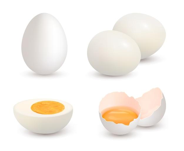 Eier realistisch. natürliche gesunde farm frische lebensmittel eigelb und proteinvektor geknackt schale hühnereier. eierschale und protein, organische eigelbillustration
