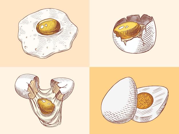 Eier und und eigelb