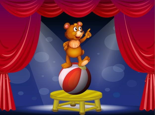 Ein bär bei der zirkusvorstellung