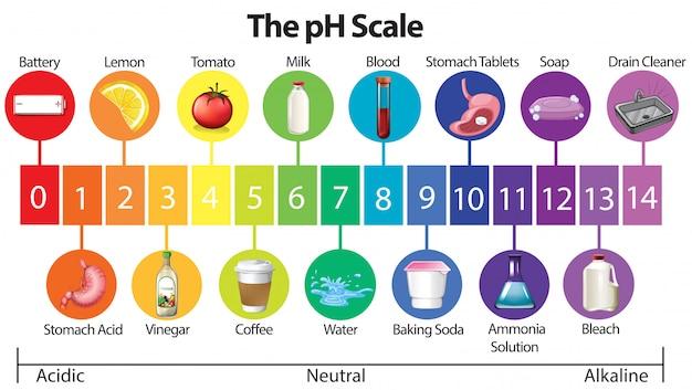 Ein bildungsposter der ph-skala