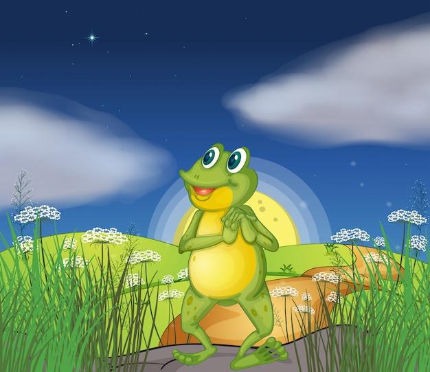 Ein frosch, der den hellen stern betrachtet