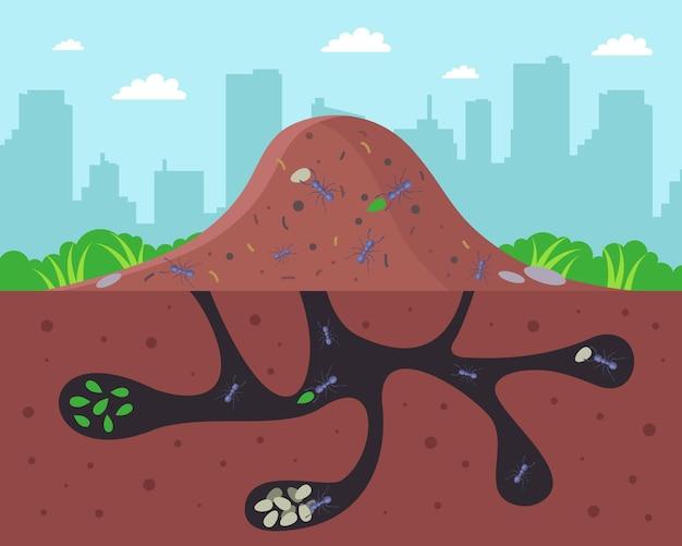 Ein großer ameisenhaufen mit unterirdischen gängen. eben