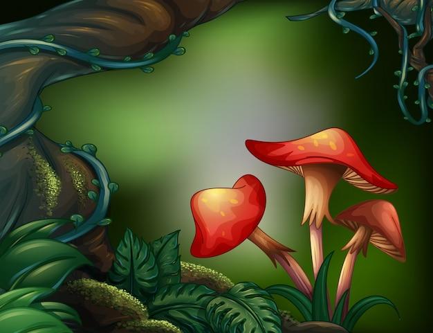 Ein großer baum im regenwald