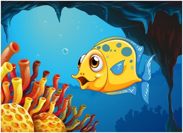 Ein großer gelber fisch unter dem meer innerhalb der seehöhle