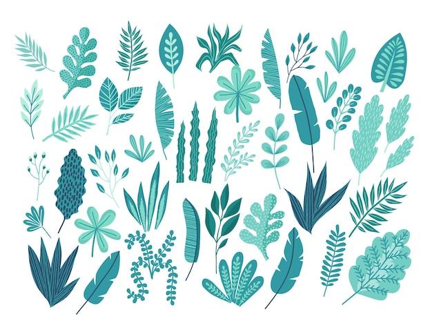 Ein großer satz von hand gezeichneten tropischen palmblättern und -niederlassungen. sommerillustration konzept mit tropischem blumenhibiskus. vorlage vektor.