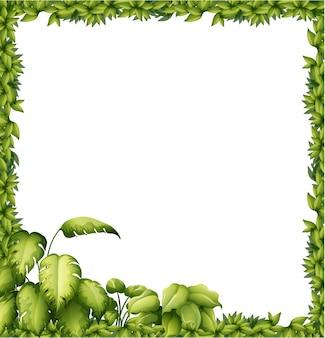 Ein grüner rahmen
